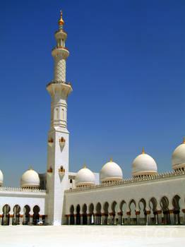 Shaykh Zayd Mosque - Minaret