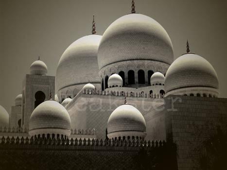 Shaykh Zayd Mosque - Domes