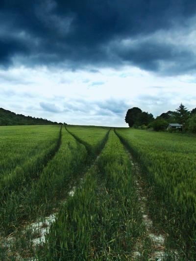 Growing Farm by Teakster