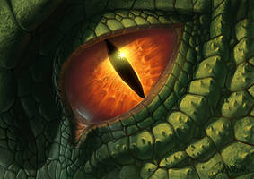 Dragon Eye v2010 by SulaMoon