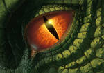 Dragon Eye v2010