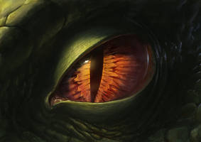 Dragon Eye 2012 by SulaMoon