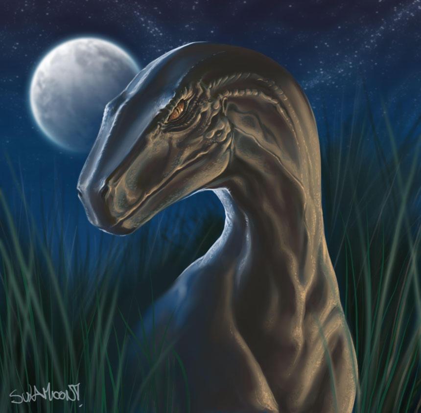 Raptor by SulaMoon