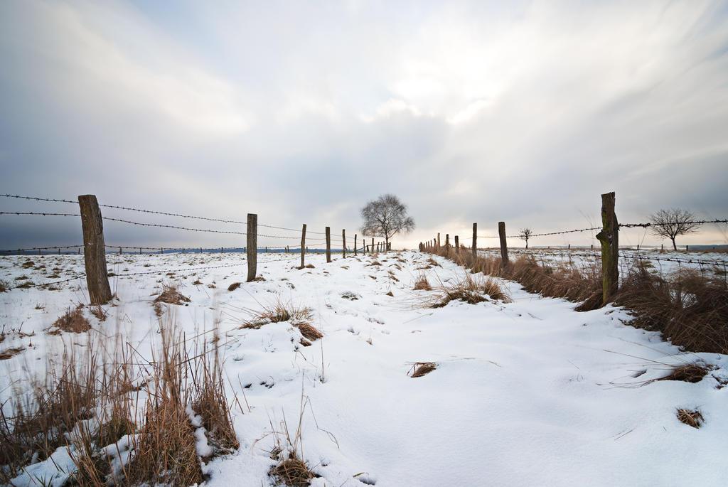 Winter lll by mARTinimal