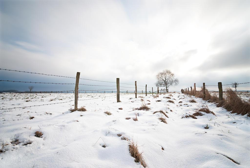 winter lV by mARTinimal