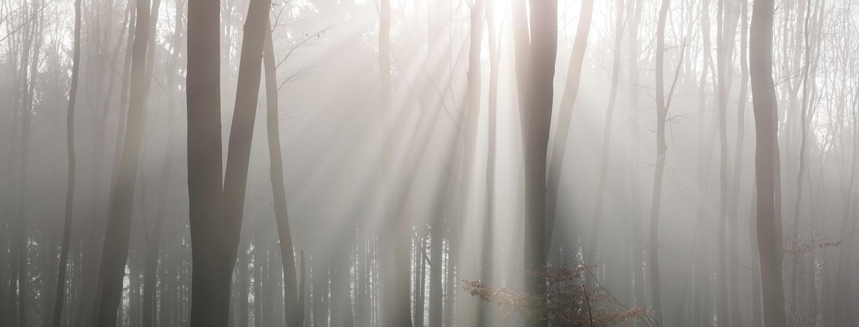 light by mARTinimal