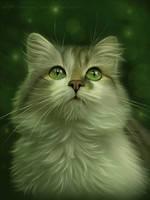 My cat by Ennya7