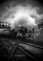 SteamTrain by fbuk