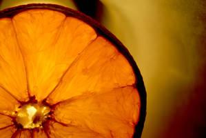 Orange by elinvik