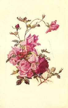 rose leaves 4
