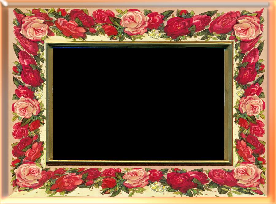 rose frame 1 by jinifur on DeviantArt