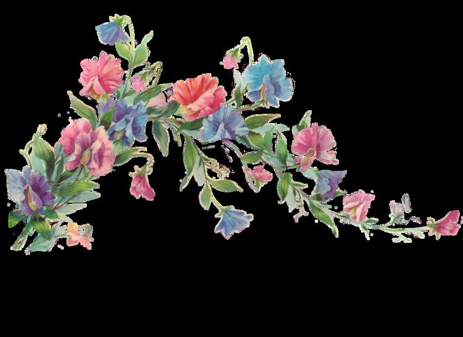 http://img12.deviantart.net/fba3/i/2011/027/7/6/floral_branch_element_by_jinifur-d387ehv.png