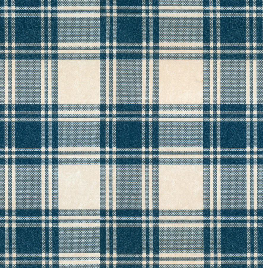 Blue and white checked by jinifur