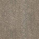 Jinifur Silver Texture