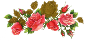 Jinifur Rose N Gold by jinifur