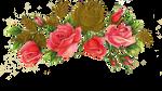 Jinifur Rose N Gold