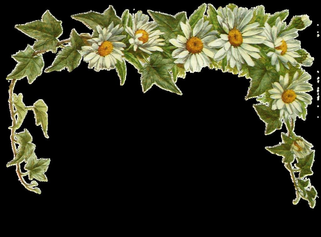 Jinifur Daisy Layer by jinifur