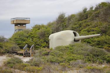 Jinifur Cannon1