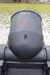 Jinifur Cannon