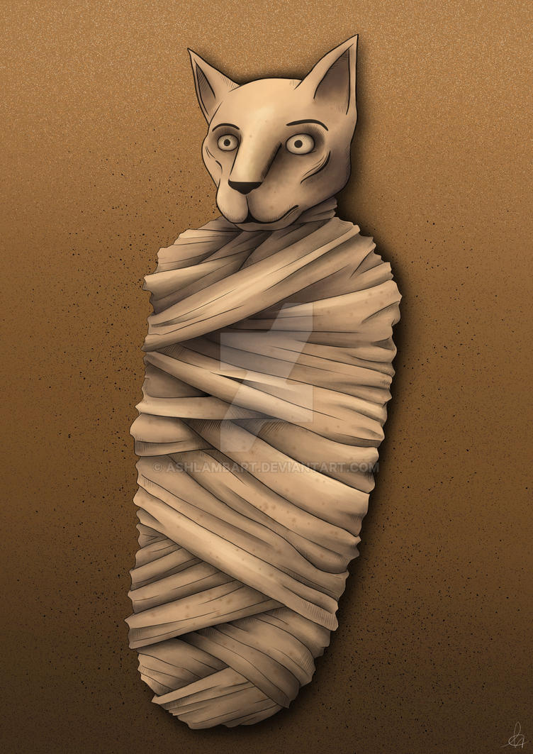 College Finals - Mummy Cat by shadowBlazeLOVER