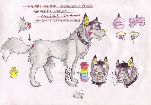 I-Ki Character Ref