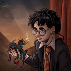 Harry and the Horntail