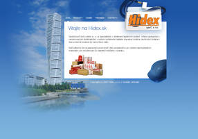 Building company website by luqa