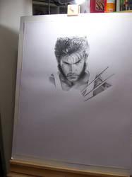 Wolverine by valeriafernand