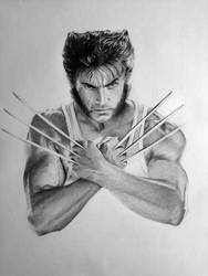 Wolverine completo by valeriafernand