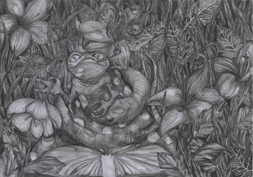 Mr Froggy and his psychedelic lizards