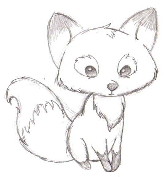 Le cute fox
