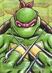 Raphael sketch card