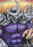 Super Shredder sketch card