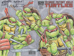 TMNT_1 sketch cover 1
