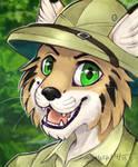Safari Lynx