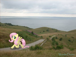 Just on a walk by WonderDashie