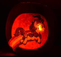 Autumn Blaze Pumpkin