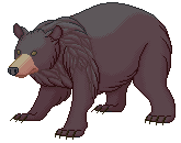 (FREE) a fat bearbear by DidTheSqd