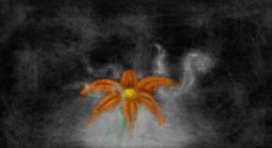Smoked Flower