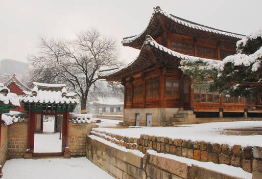 Winter Wonderland in Korea