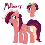 NextGen: Mulberry