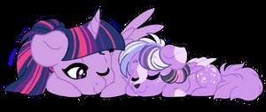 CHIBI - sweet dreams