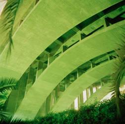 Bridge 4
