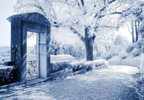 Escape of a dream by LuneBleu
