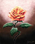 Rose for a Rose