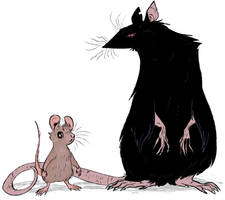 mouse and rat