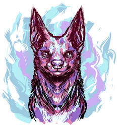 scribbly dog