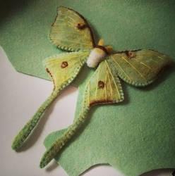 Luna Moth (Prototype) by quirkandbramble