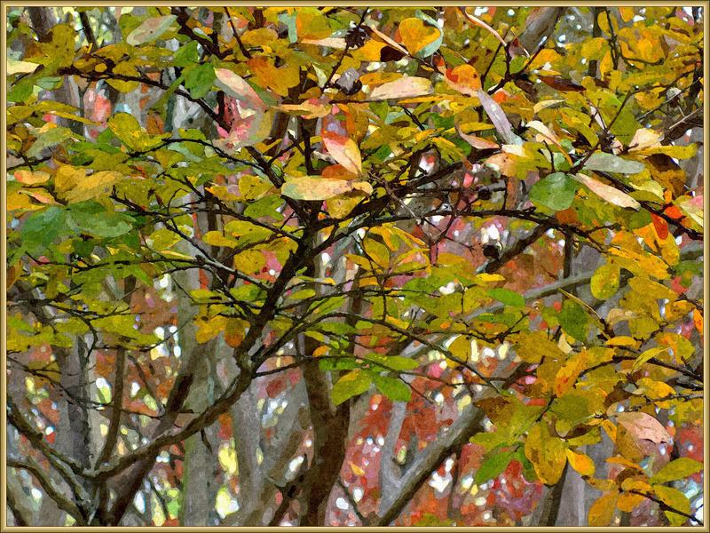Autumn Painted by Tailgun2009
