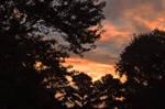 Sunrise 8-30-10